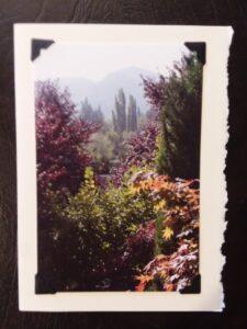 """Fairhaven Mountain"" Photoprint 7"" x 5"" $5.00"